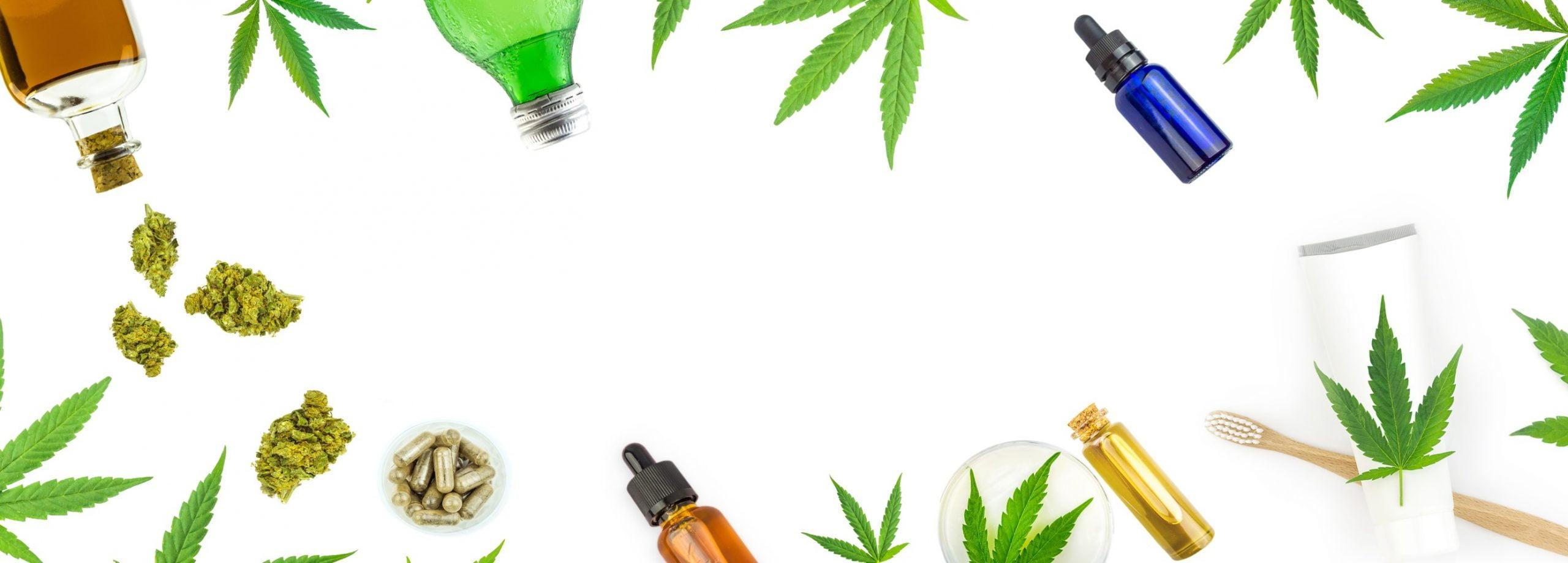 Dry herb Vaporizers °~° Vape pens